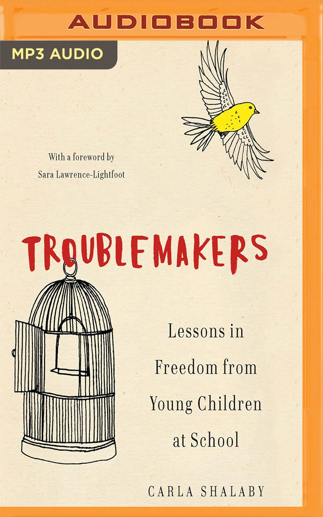 Download Troublemakers: Lessons in Freedom from Young Children at School ebook
