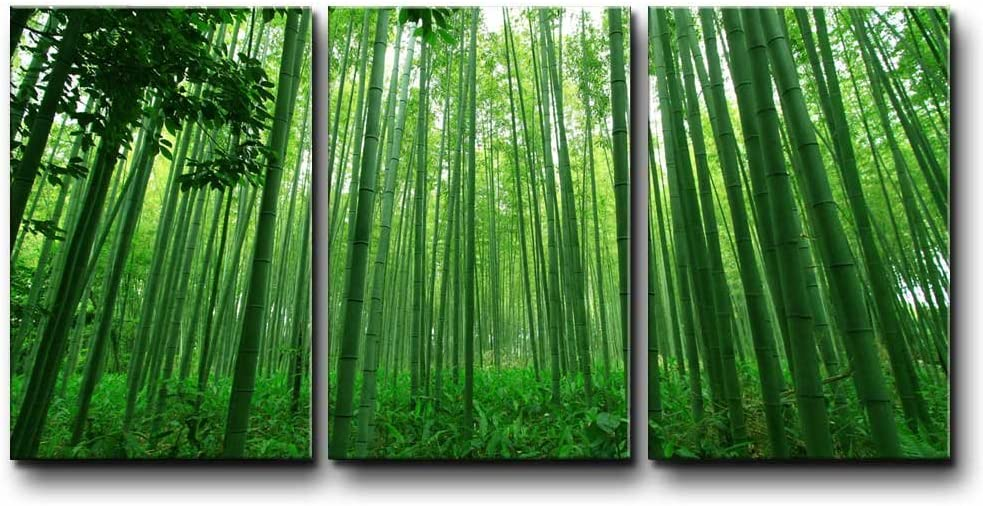 wall26 - Three Piece Canvas - Diagonal Green Bamboo Forest on 3 Panels - Canvas Art Home Art - 16x24 inches