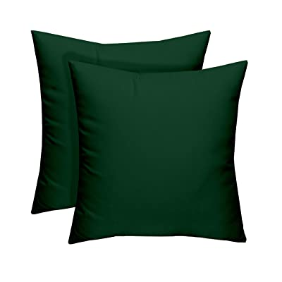 "RSH Décor Sunbrella Indoor Outdoor Decorative Patio Square Throw Pillows Water Resistant Set of 2 (17"" x 17"", Canvas Forest Green) : Garden & Outdoor"