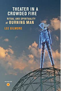 AfterBurn: Reflections on Burning Man (Counterculture Series
