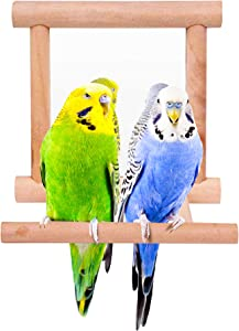 Blessed family Bird Parakeet Mirror for Cage,Parrot Perch Stand,Wooden Hummingbird Swing Toy,Parakeet Accessories for Cockatiels Conure Finch Lovebird Canary African Grey Macaw