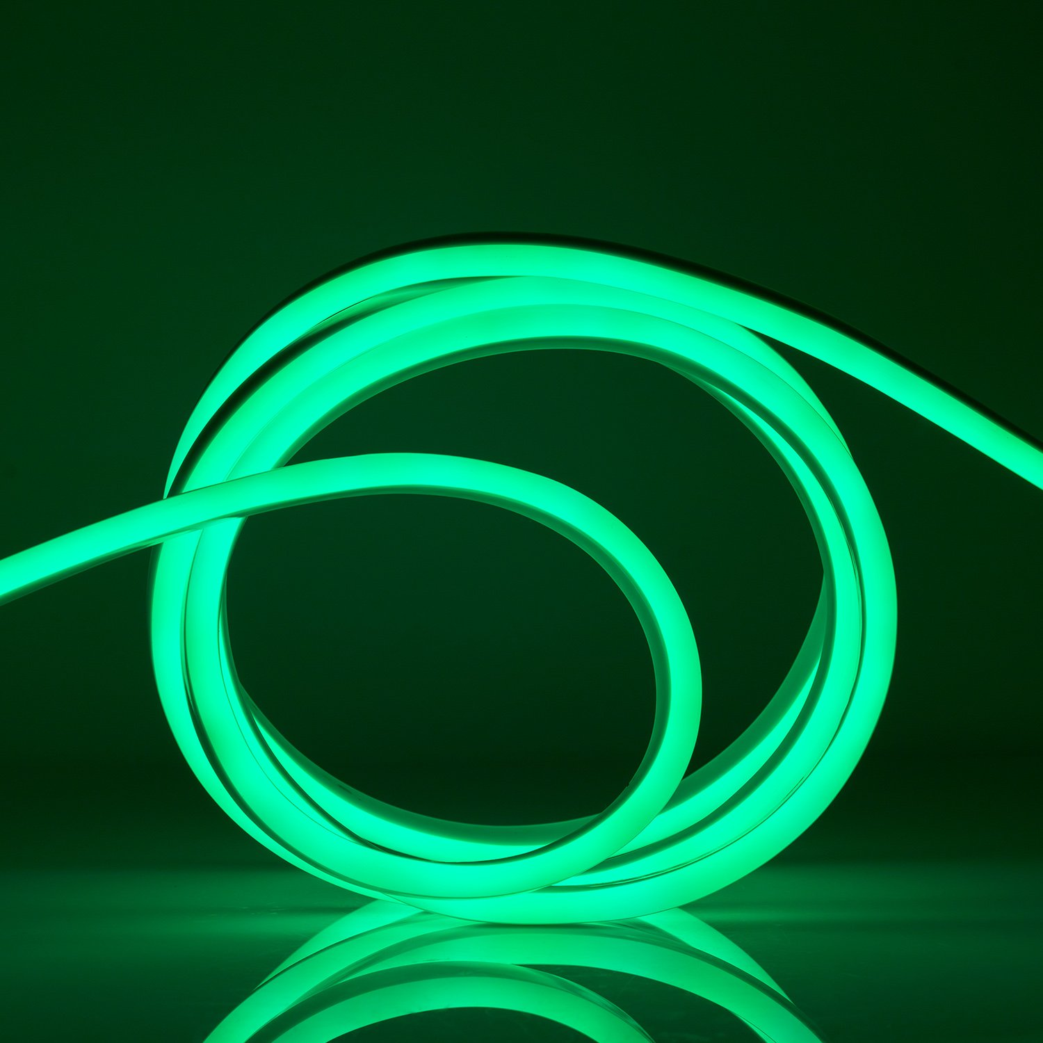 WYZworks Green Flexible Water Resistant Soft Double Side LED Neon Rope Light Strip Bar 100FT