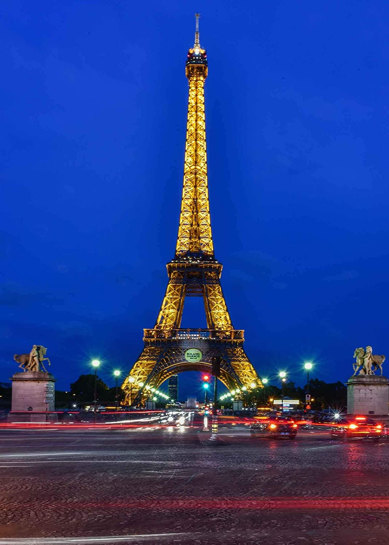 GoHeBe 5x7ft Eiffel Tower Backdrop Blue Sky Lights Bright Eiffel Tower Night Paris Romantic Photography Backdrop Photo Photography Background Props Studio Display Mural LYGY215