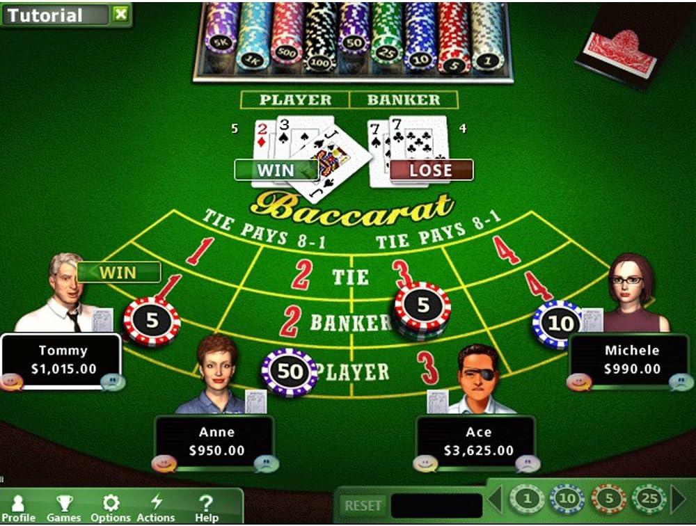 Hoyle 2012 casino casino gambling texas