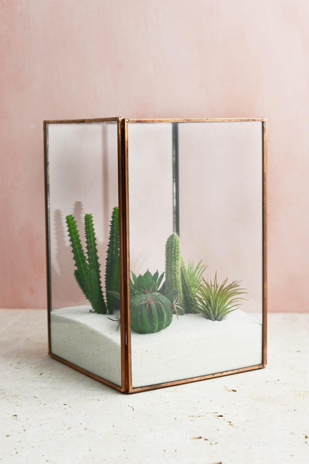Richland Glass Terrarium Display Case Copper Large Set of 6