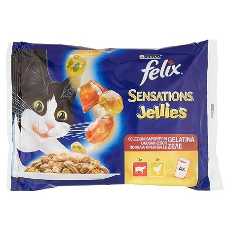 Felix Sensations, diseño de buey de tomate y de pollo, diseño de zanahorias,