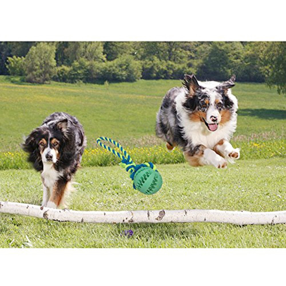 Dog Chew Toy Durable Non-Toxic Toy Balls for Small Dogs Soft Bouncy Rubber Dog Ball Launcher for aggressive chewers training Pet Dog Cat Exercise and Reward Toy
