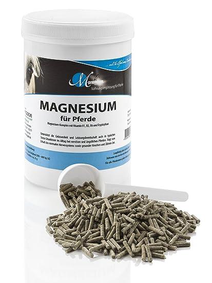 M de Premium Magnesio – 750 g – Alimentos Complemento para caballos – Soporta la serenidad