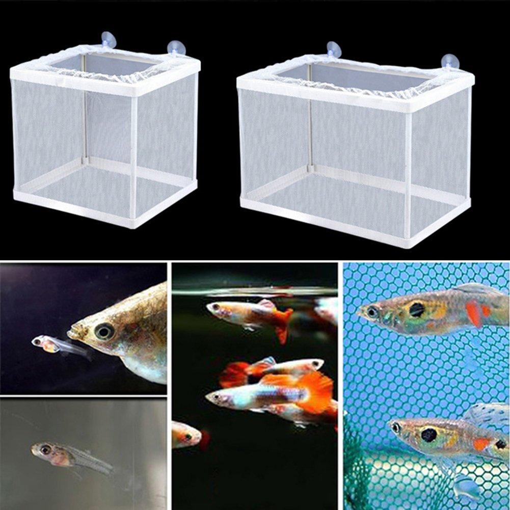 SADA72 - Red para Acuario o pecera, para incubadora de Acuario, con Marco de plástico, para aislar, Show, 16.5 x 14.5 x 15cm: Amazon.es: Hogar