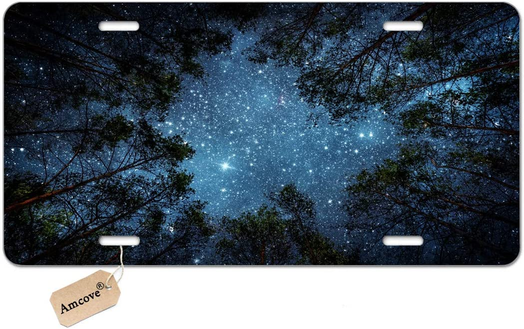 Amcove Beautiful Night Sky License Plate, The Milky Way and The Trees,Sublime Forest Nature View Vanity Front License Plate Tag,6 X 12 Inch