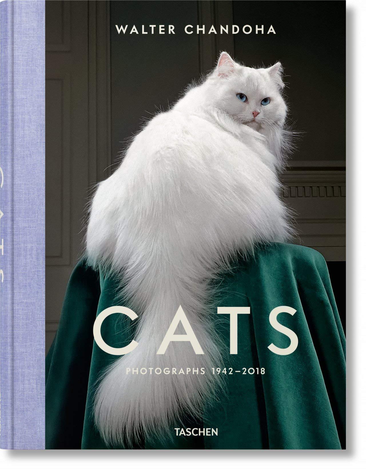 Walter Chandoha. Cats. Photographs 1942-2018 by INGRAM BOOK COMPANY