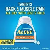 Aleve Back & Muscle Pain Tablets, Naproxen Sodium