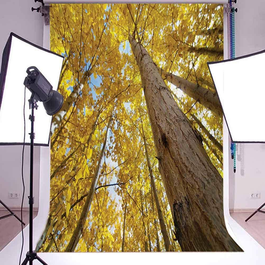 Nature 6.5x10 FT Backdrop Photographers,Image of Up View of Fall Aspen Tree Leaves in Faded Tone Autumn Season Photography Background for Baby Shower Bridal Wedding Studio Photography Pictures Yellow
