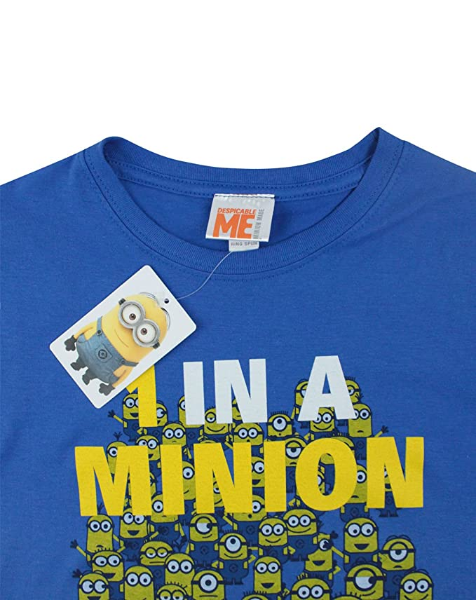 67a3bc50 Amazon.com: Official Minions One in a Minion Women's T-Shirt: Clothing