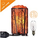 "Himalayan Salt Lamp, Salt Rock Lamp Natural Night Light in Forest Design Metal Basket with Dimmer Switch (4.1 x 6.5"" 4.4…"