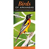 Birds of Arkansas: A Guide to Common and Notable Species