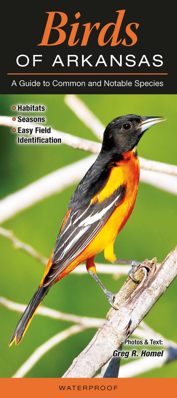 Pdf arkansas birds: a folding pocket guide to familiar species (a poc….