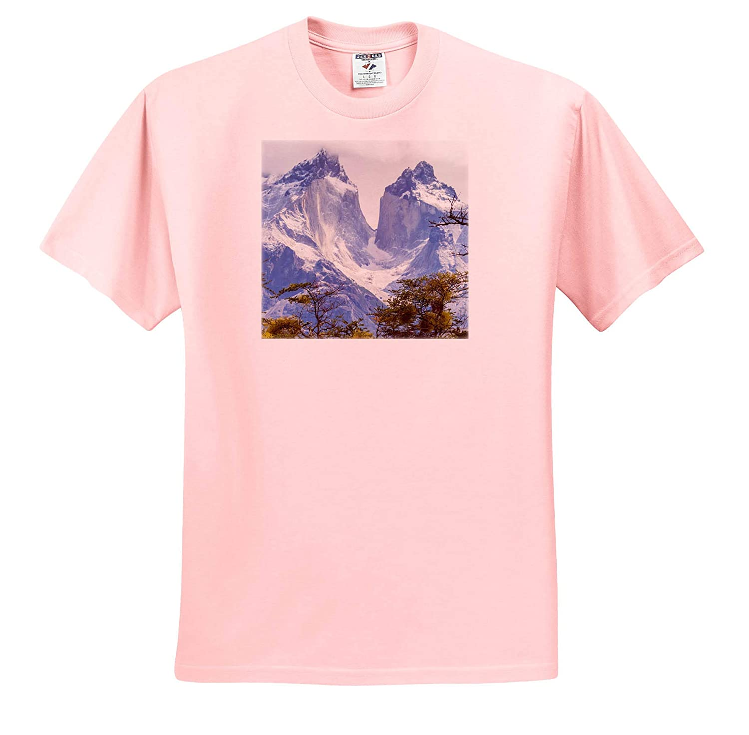 - Adult T-Shirt XL Chile Mountains ts/_314352 Patagonia 3dRose Danita Delimont The Horns Mountains