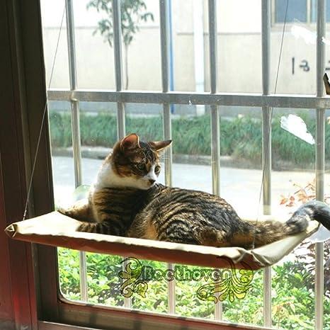 Gato Hamaca Ventana mascotas gato cama Sonniger Asiento Beige