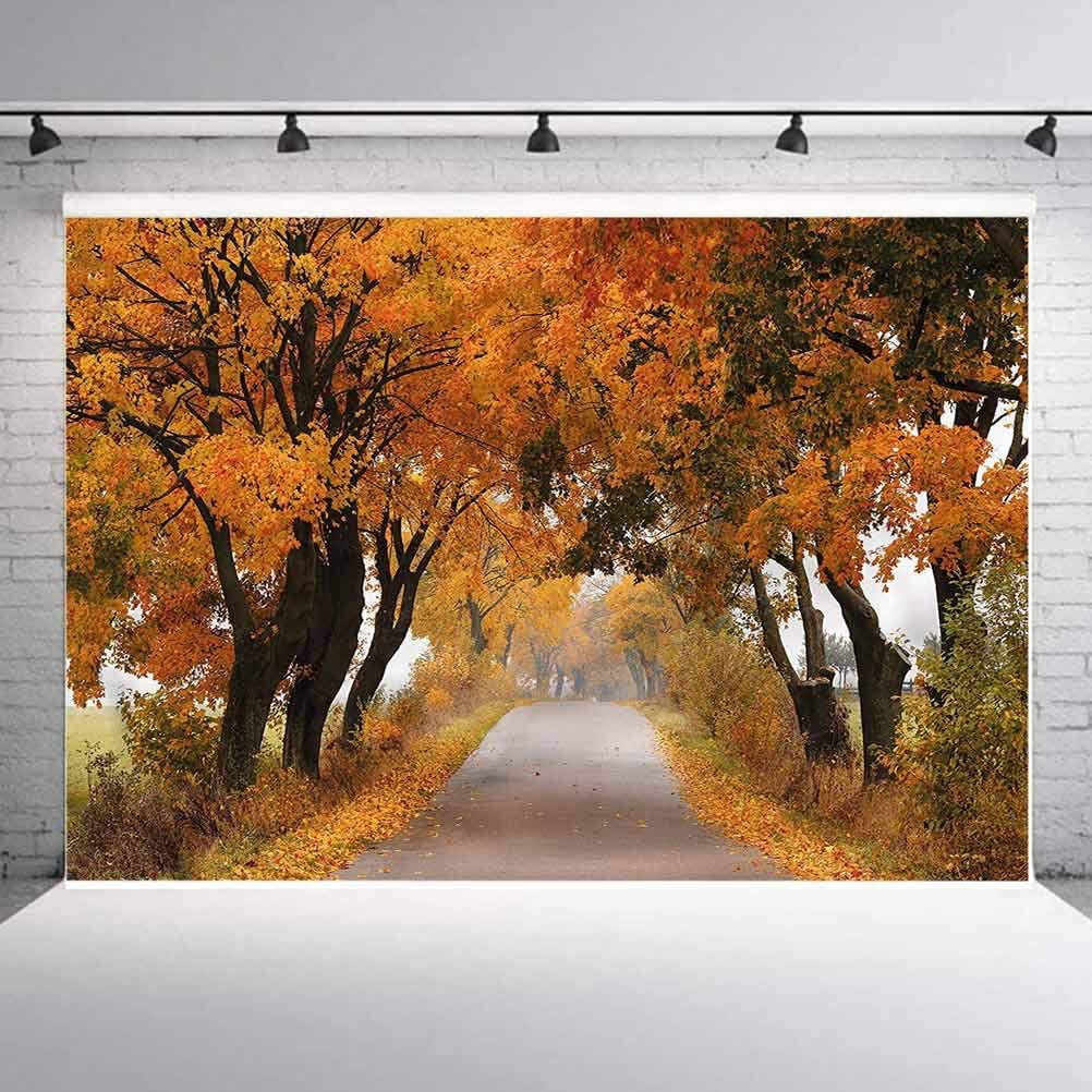 6x6FT Vinyl Photo Backdrops,Fall,Serene Vivid Maple Trees Photo Background for Photo Booth Studio Props