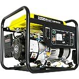 DuroStar DS1500 1500-Watt 2.5-Hp Air Cooled Gas Powered Portable Generator