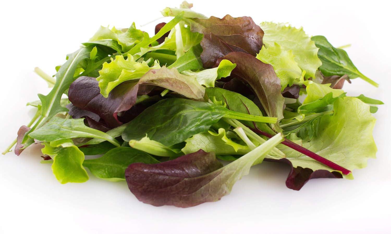 500 SEEDS Non-GMO Paleo Vegetable Garden Indoor Container Garden 35-70 Day Maturity Heirloom Lettuce Gourmet Mix