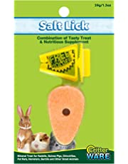 Ware Manufacturing Carrot Salt Lick Small Pet Chew with Holder