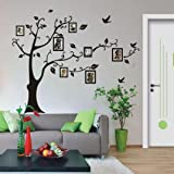 Clearance! Wall Stickers,Canserin 180×250cm 3D DIY Photo Tree PVC Wall Decals Adhesive Wall Stickers Mural Art Home Decor