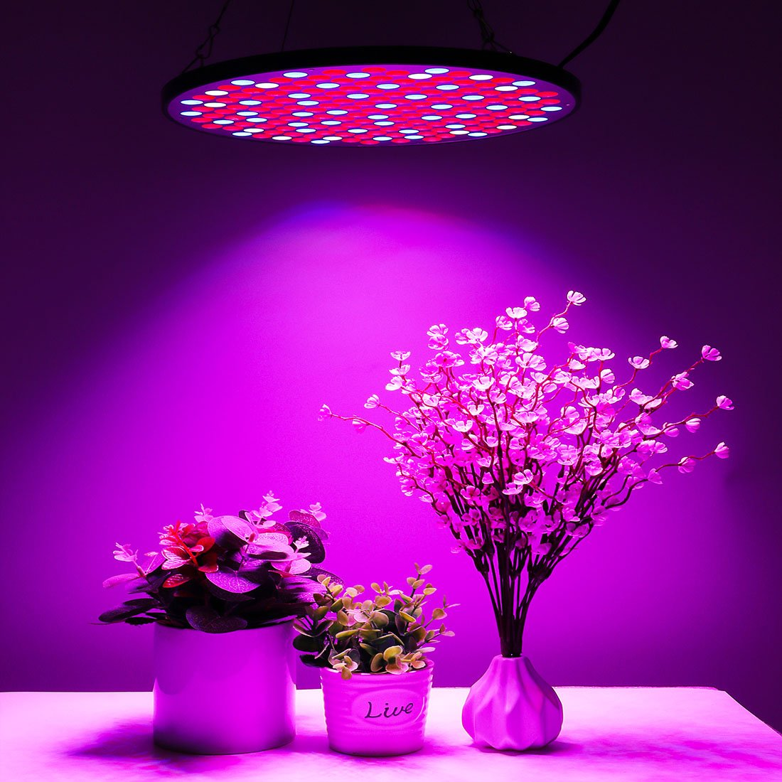 KINGBO 50W UFO LED Grow Light Panel Full Spectrum with Switch for Indoor Plants Seeding Growing and flowering. by KINGBO LED (Image #2)