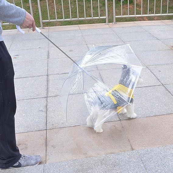 Paraguas para mascotas artesanal 9 para perros pequeños, paraguas con correa para perro, mantiene a la mascota seca y cómoda en el día de la lluvia: ...