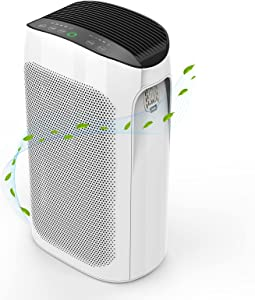 Air Purifier for Home Large Room up to 495 ft² , H11 Smart True HEPA Air Purifier for Allergies and Pets, 20db Quiet Model, Remove 99.97% Hairs, Dust, Pollen, Smoke and Odor Eliminator