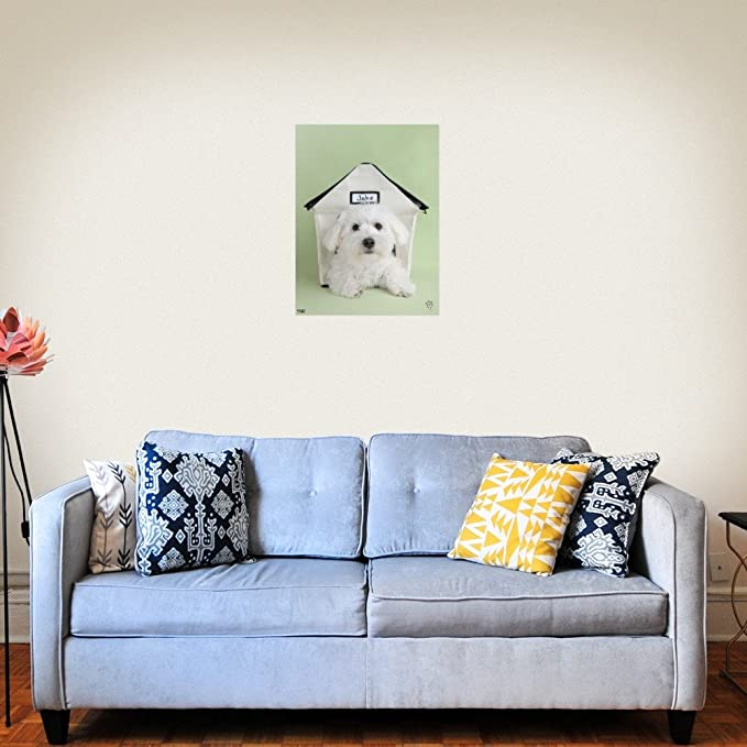 amazon com graphics and more bichon frise maltese puppy dog in rh amazon com dog in house photo dog in house clipart