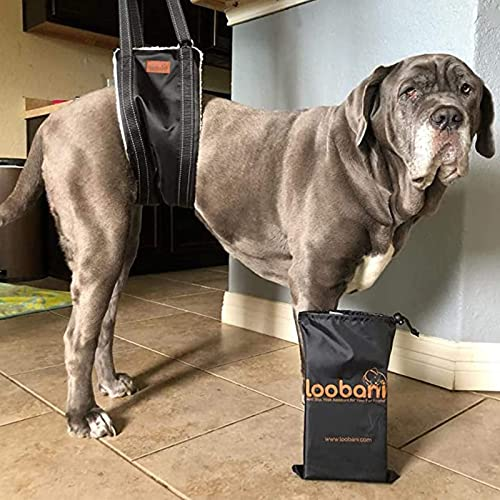 LOOBANI-Portable-Dog-Sling-for-Back-Legs