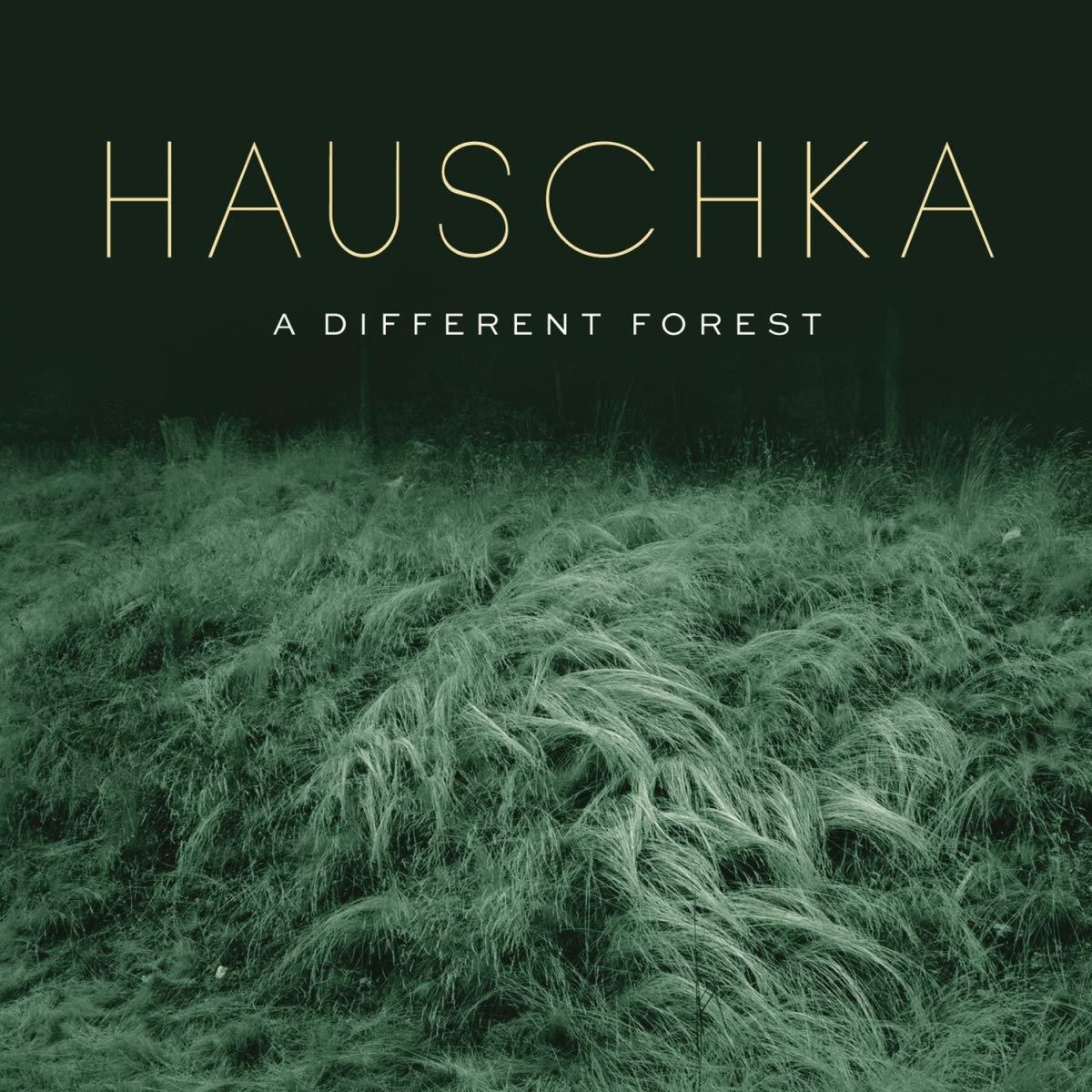 Vinilo : Hauschka - Different Forest (LP Vinyl)
