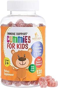 Kids Immune Support Gummies with Vitamin C, Echinacea and Zinc - Children's Support & Vitamin C Gummy, Tasty Natural Fruit Flavor, Vegan by Nature's Nutrition - 120 Gummy Bears