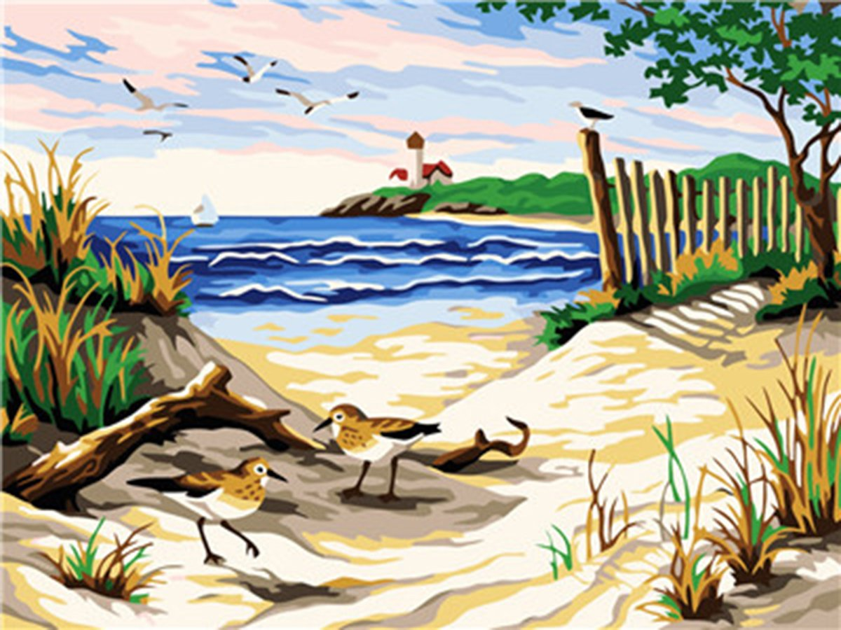 Shukqueen Diy Oil Painting, Adult's Paint by Number Kits, Acrylic Painting Beach 16X20 Inch (Framed Canvas)