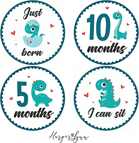 Monthly Bodysuit Stickers - Set of 16 Personalized Monthly Milestone Stickers for Girls newborn to 12 months #065