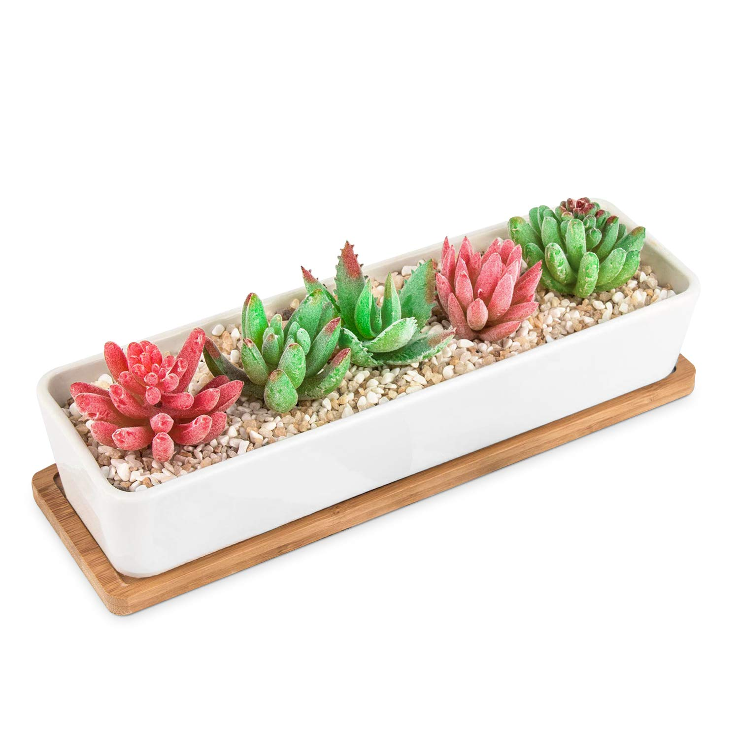 HOMENOTE Larger Rectangle Planter Pots Size 11.1 x 3.54 x 2.17 inch for Small Succulent Plants Long White Ceramic Succulent Planter Pots with Drainage Hole and Bamboo Tray