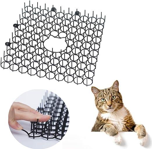 WZ 10PCS Scat Cat Mat con Púas, Humane Pet Disuasión Mat como Gatos, Perros Y Más, Anti-Gatos Red De Excavación Tapón Prickle Gaza Planta Red Protectora: Amazon.es: Hogar