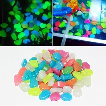 Gugutogo - Piedras Luminosas Que Brillan en la Oscuridad, para Decoración de Acuario, Piscina, Jardín, Decoración (Color: Varios Colores): Amazon.es: Jardín