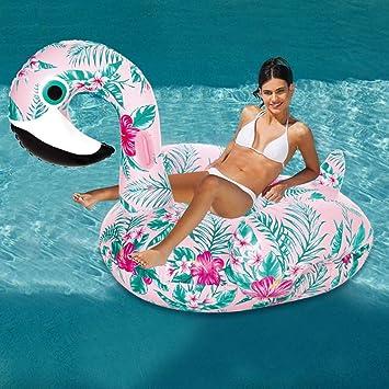 LIJUEZL Flotadores inflables de Verano en la Piscina: Modelo de ...