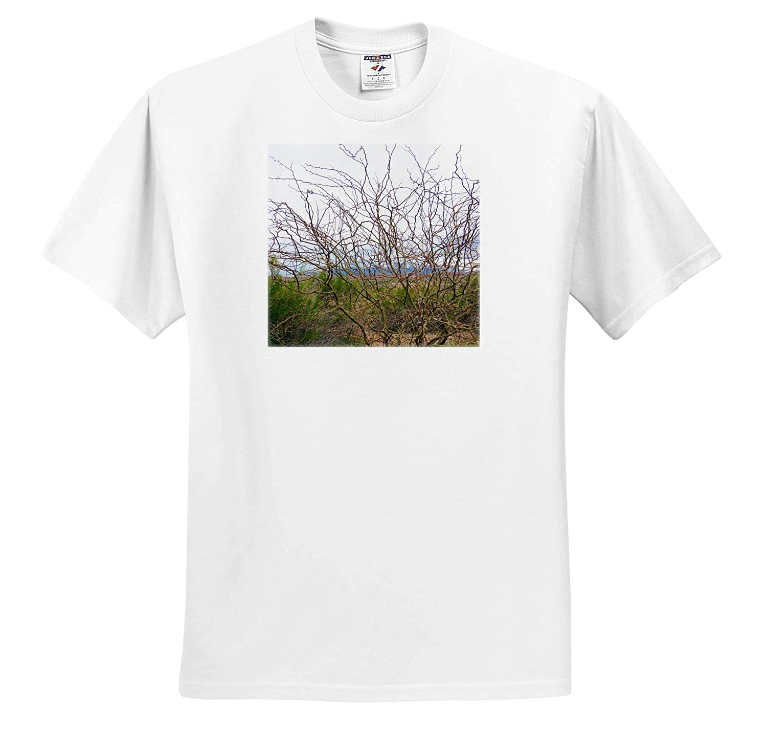 3dRose Jos Fauxtographee- Bush ts/_320272 Adult T-Shirt XL A Barren Bush with squiggly Branches and red Ends with Thorns