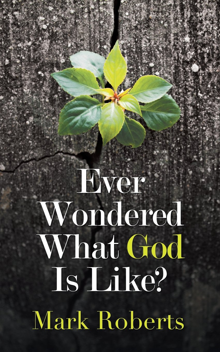 Ever Wondered What God Is Like? pdf