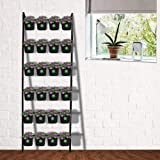 TrustBasket Vertical Ladder Stand with 24 Pouches (Black)