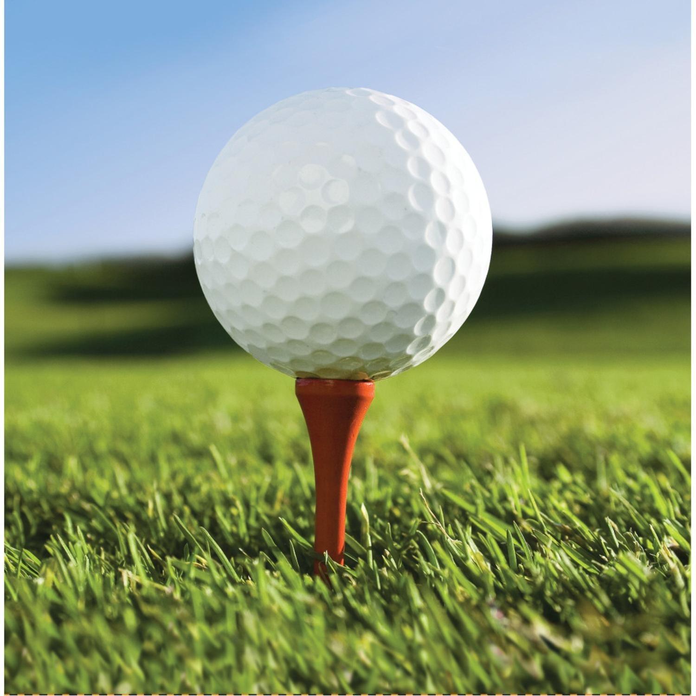 クラブパックof 216 Sports Fanaticゴルフプレミアム2重使い捨てLunch Napkins 6.5