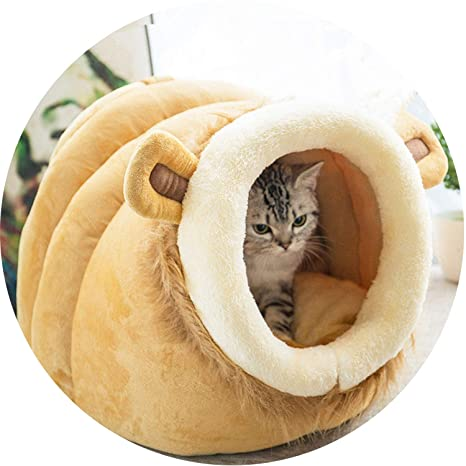 5541d8ef42ed Amazon.com : Cat Bed House Lovery Bed Pet Puppy Nest Shell Kitten ...