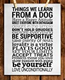 Amazon.com: Rules In A Belgian Malinois' House: Prints