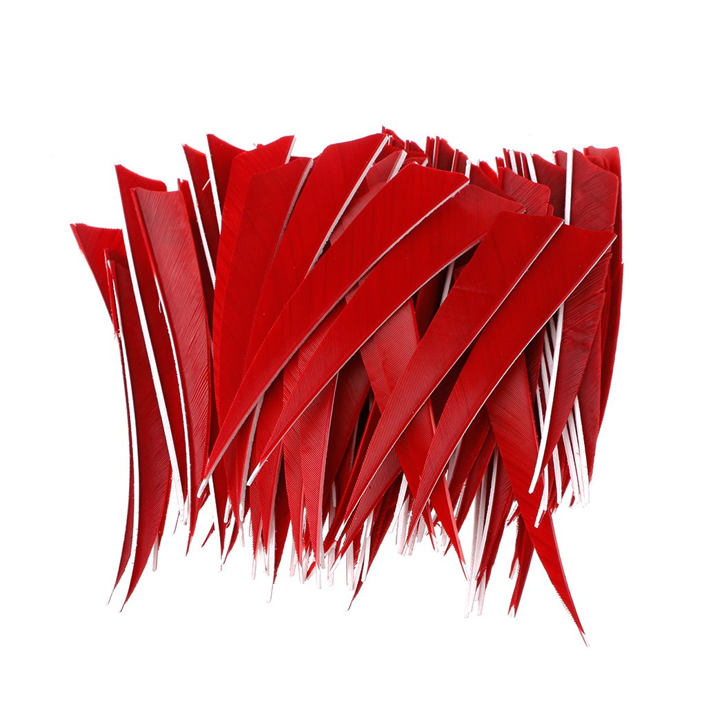 ULKEME 100pcs 5 Inch Shield Shape Turkey Arrow Feathers Archery Competition Accessories (red)
