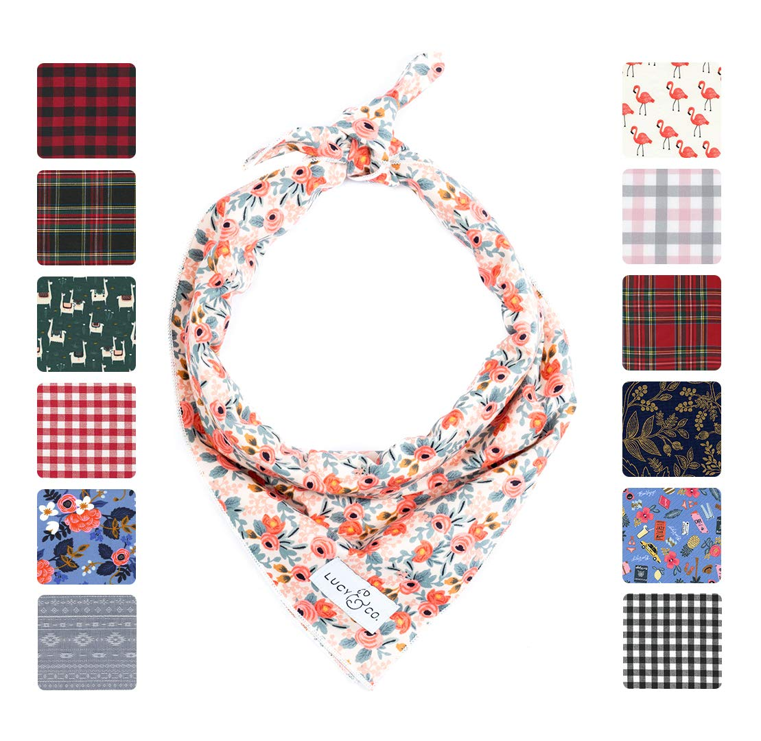 Lucy & Co. Dog Bandana - Designer Puppy Accessory for Boy and Girl Dogs - Includes 1 Limited Edition Print Bandana by Lucy & Co.