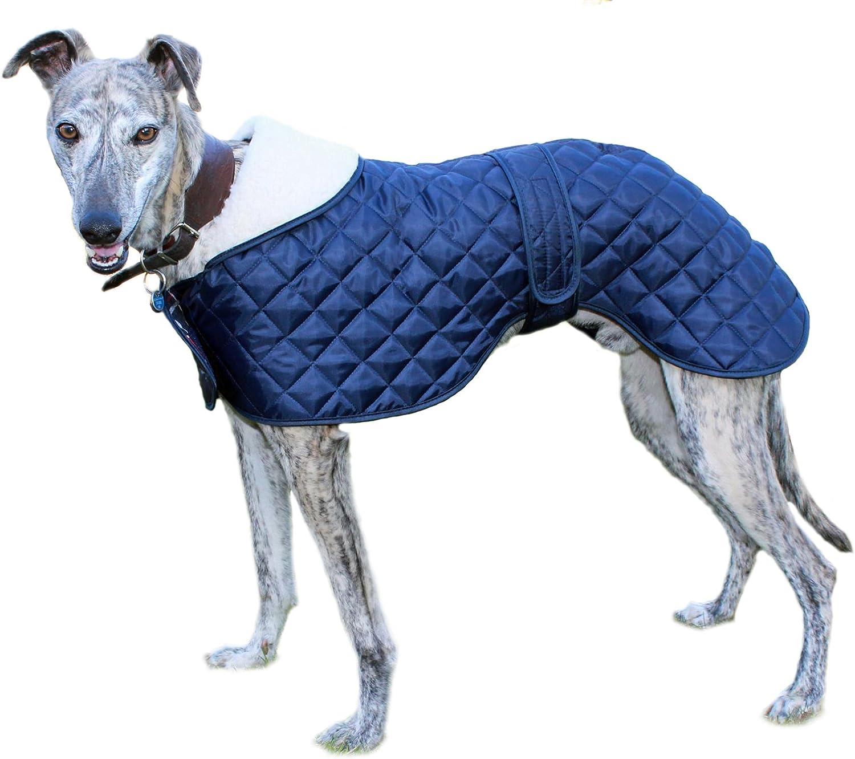Cosipet - Anorak para Galgo, Azul: Amazon.es: Productos para mascotas